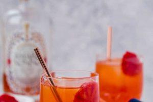 Snow day elixir (blood orange paper plane)