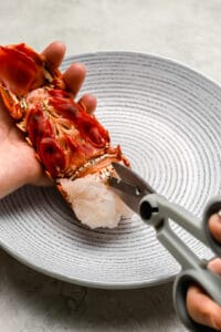Using kitchen shears to cut lobster tail shell