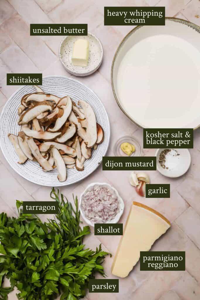 Ingredients for parmesan cream sauce