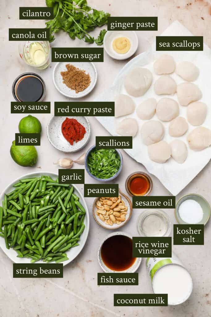 Ingredients for Thai curry