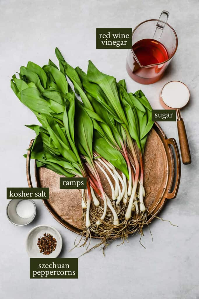 Ingredients for pickled ramps