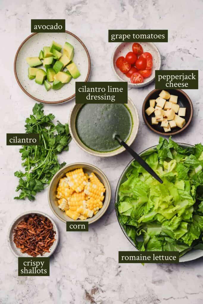 Ingredients for Santa Fe salad