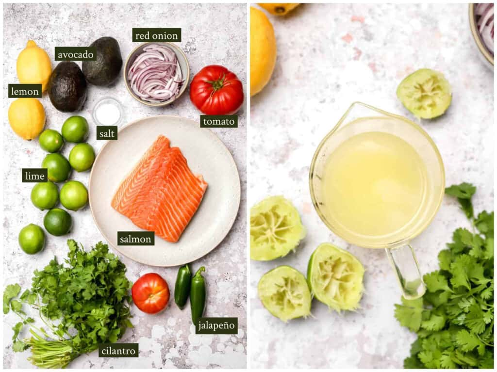 Ingredients for ceviche de pescado