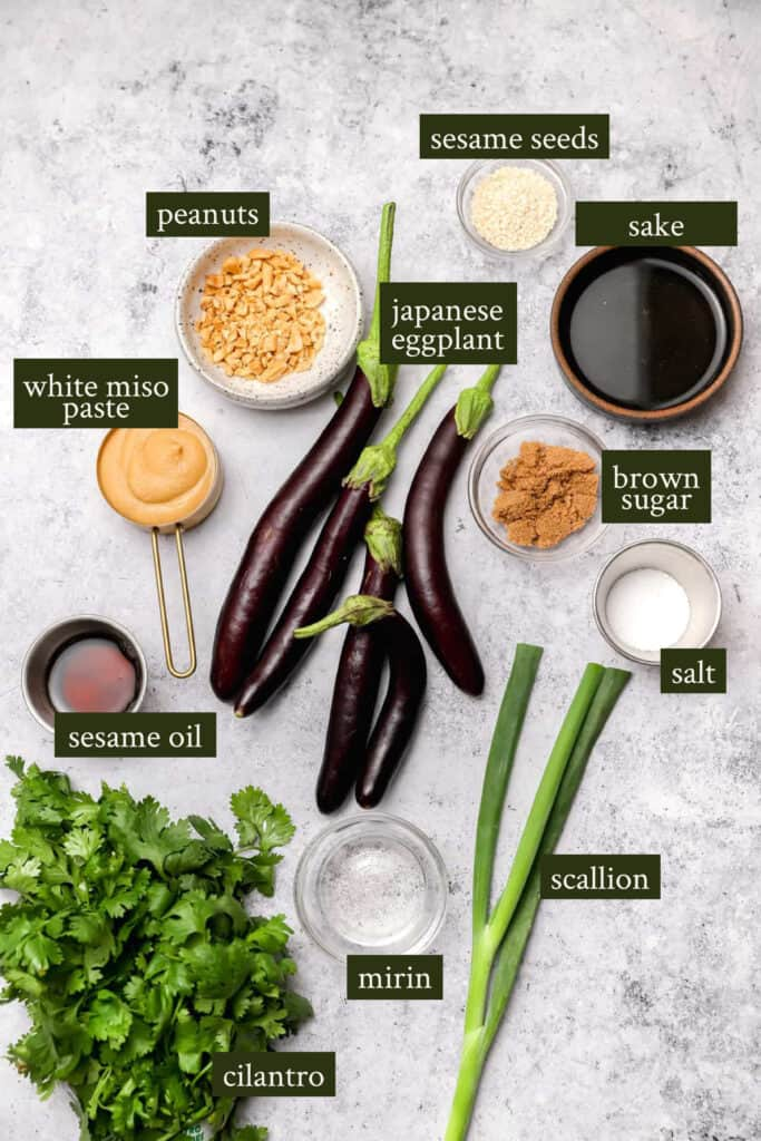 Ingredients for miso eggplant
